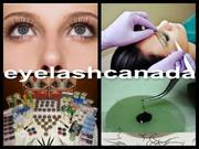 Inexpensive Online Eyelash Extensions Training Course